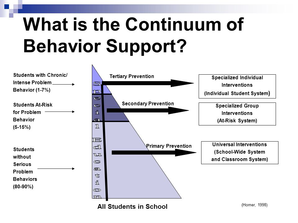 What is the Continuum of Behavior Support