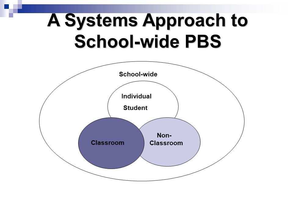 A Systems Approach to School-wide PBS