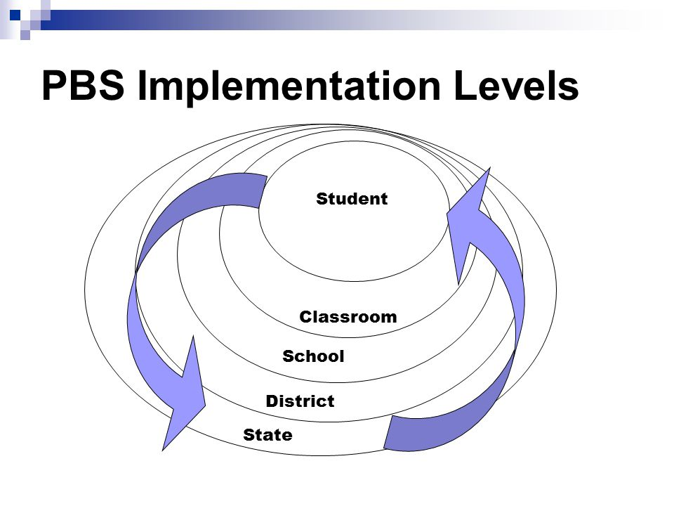 PBS Implementation Levels