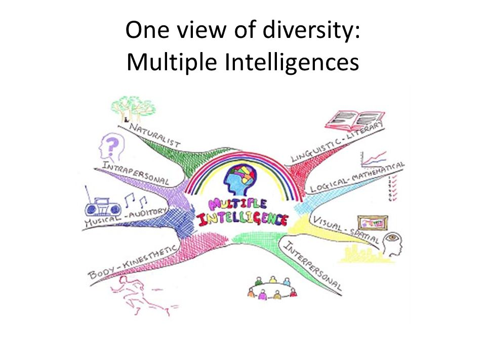 One view of diversity: Multiple Intelligences