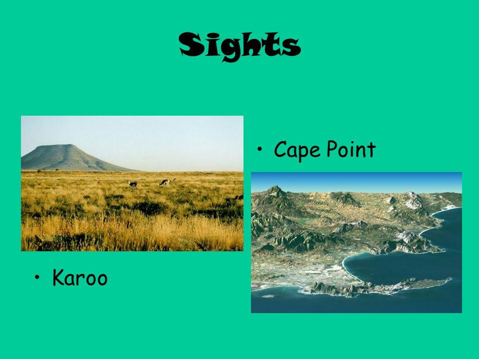 Sights Cape Point Karoo