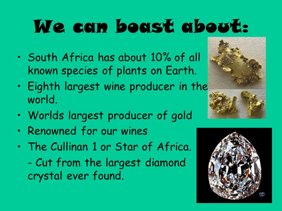 We can boast about: South Africa has about 10% of all known species of plants on Earth. Eighth largest wine producer in the world.