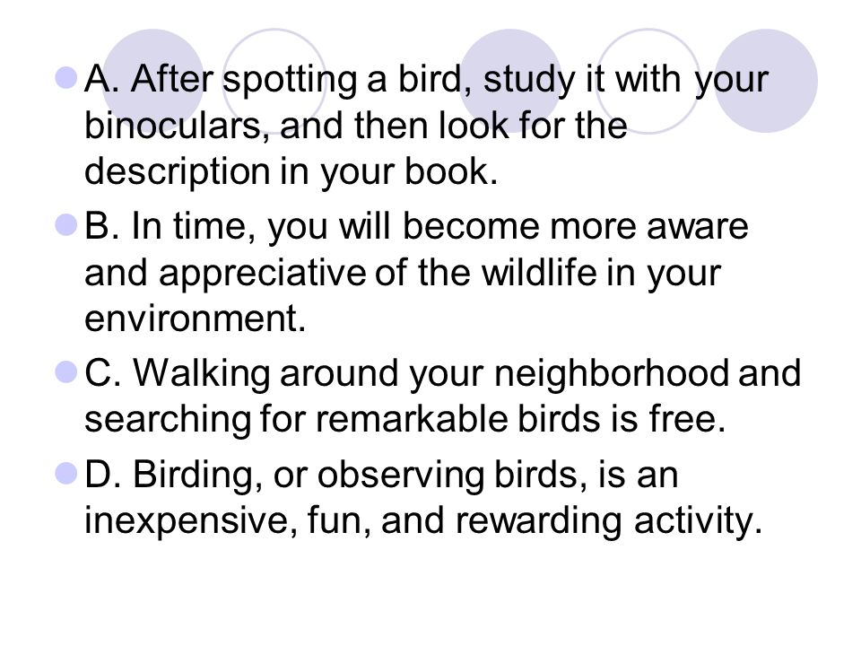A. After spotting a bird, study it with your binoculars, and then look for the description in your book.