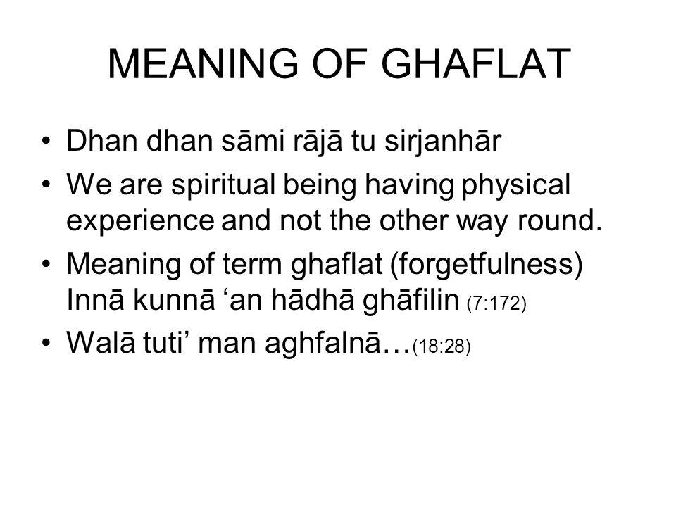 MEANING OF GHAFLAT Dhan dhan sāmi rājā tu sirjanhār