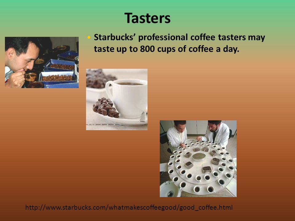 Tasters Starbucks' professional coffee tasters may taste up to 800 cups of coffee a day.