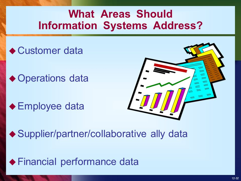 What Areas Should Information Systems Address