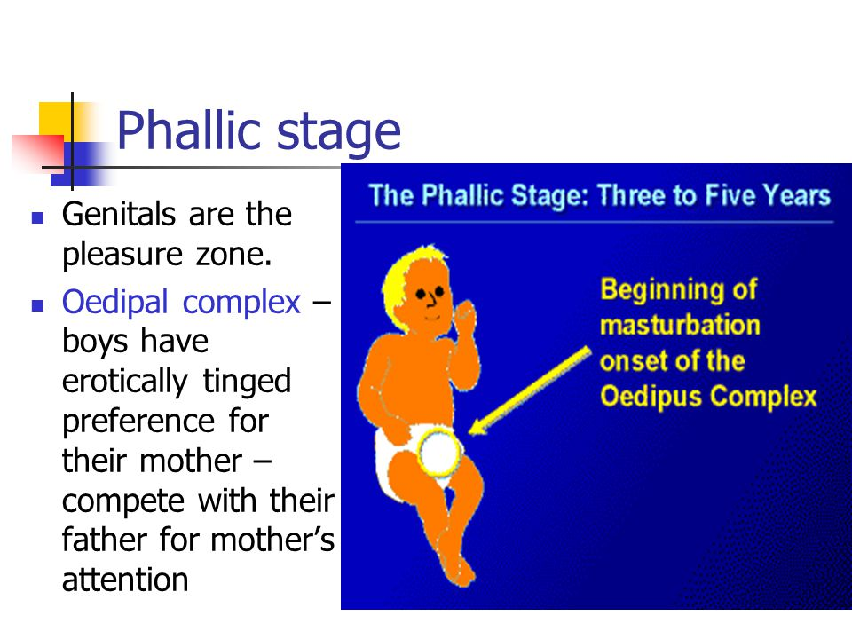 Phallic stage Genitals are the pleasure zone.