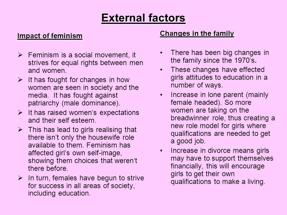 External factors Changes in the family Impact of feminism