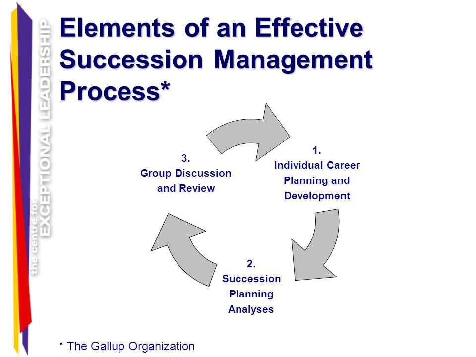 Elements of an Effective Succession Management Process*
