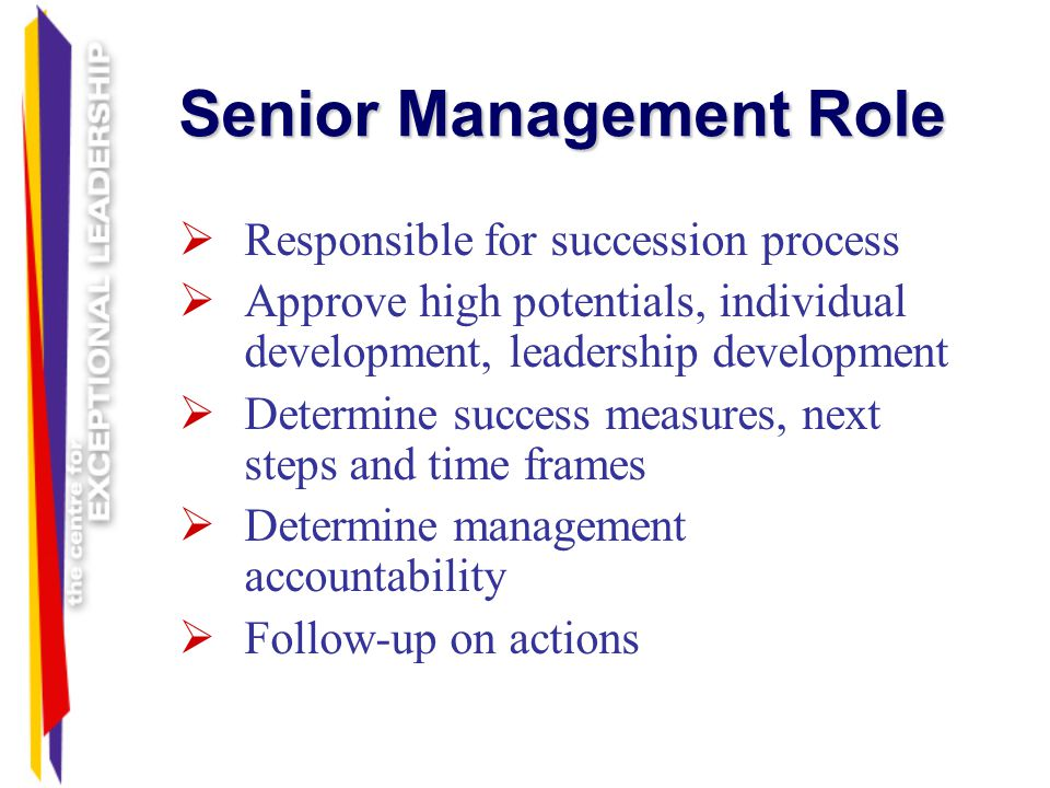 Senior Management Role