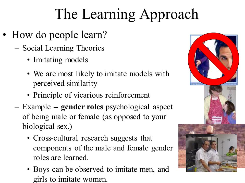 The Learning Approach How do people learn Social Learning Theories