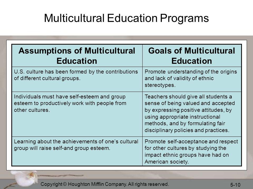 Multicultural Education Programs