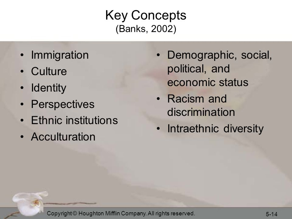 Key Concepts (Banks, 2002) Immigration Culture Identity Perspectives