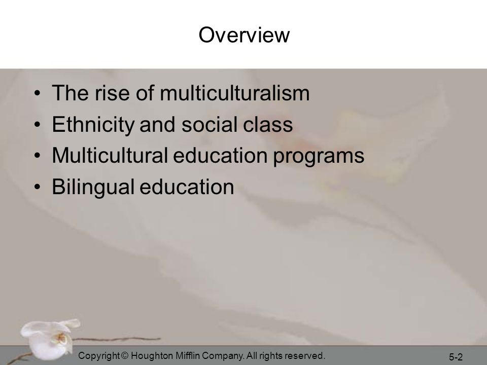 The rise of multiculturalism Ethnicity and social class