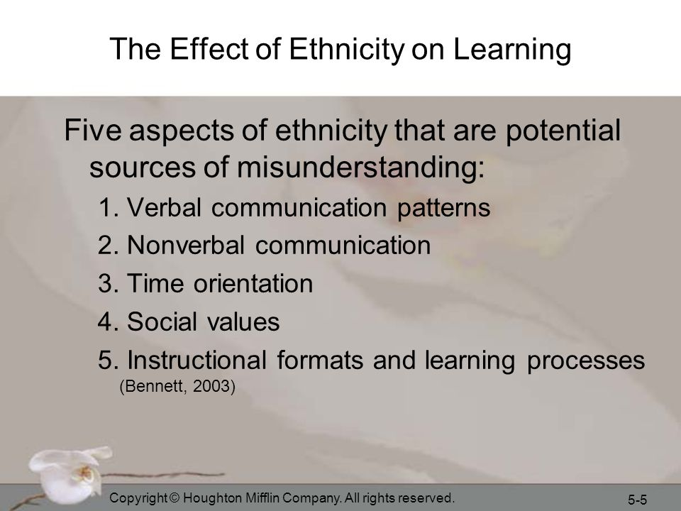 The Effect of Ethnicity on Learning