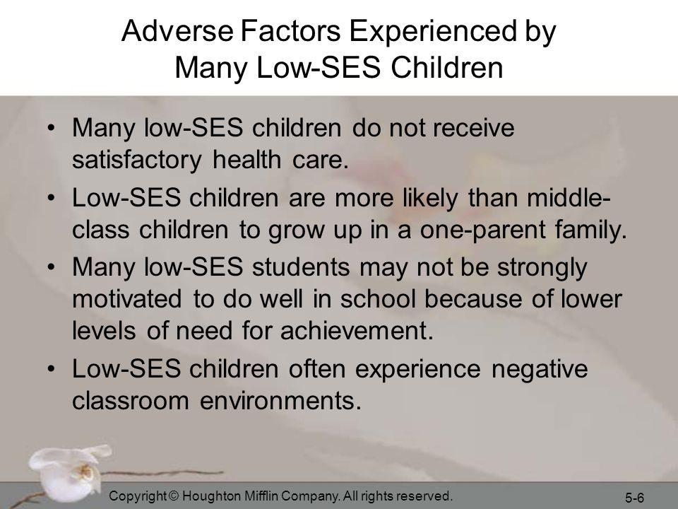 Adverse Factors Experienced by Many Low-SES Children