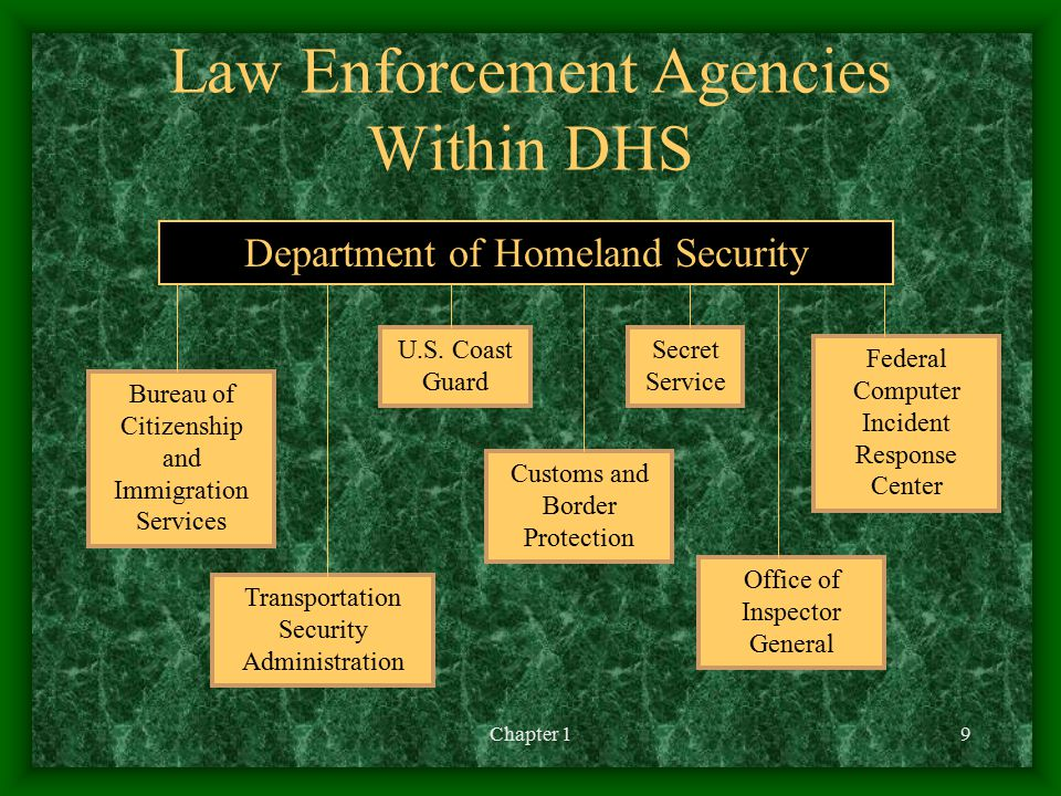 Law Enforcement Agencies Within DHS