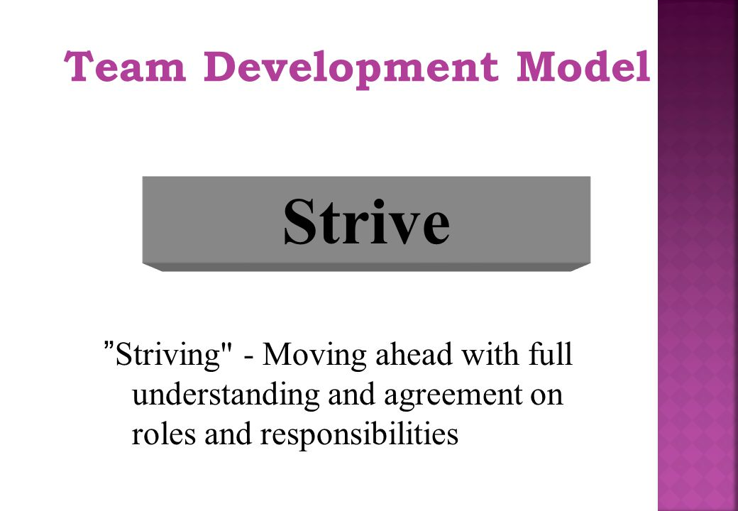 Strive Team Development Model