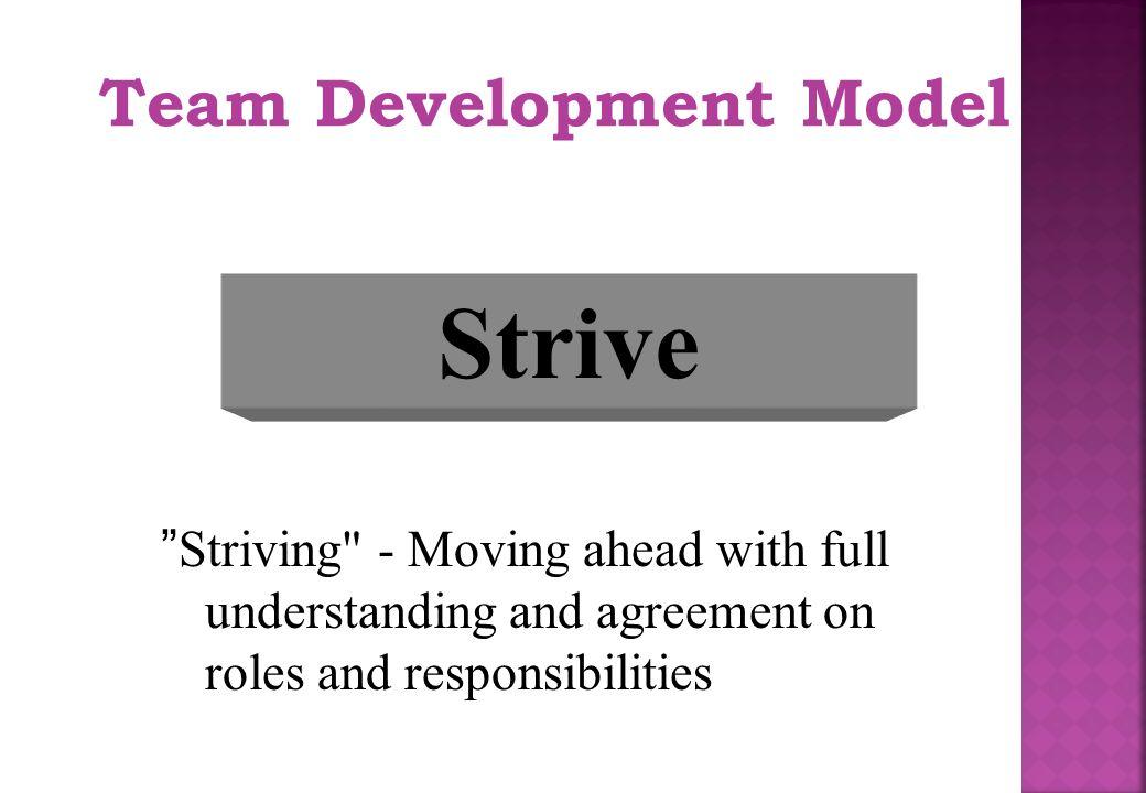 Strive Team Development Model