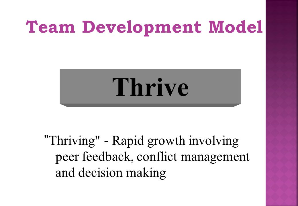 Thrive Team Development Model