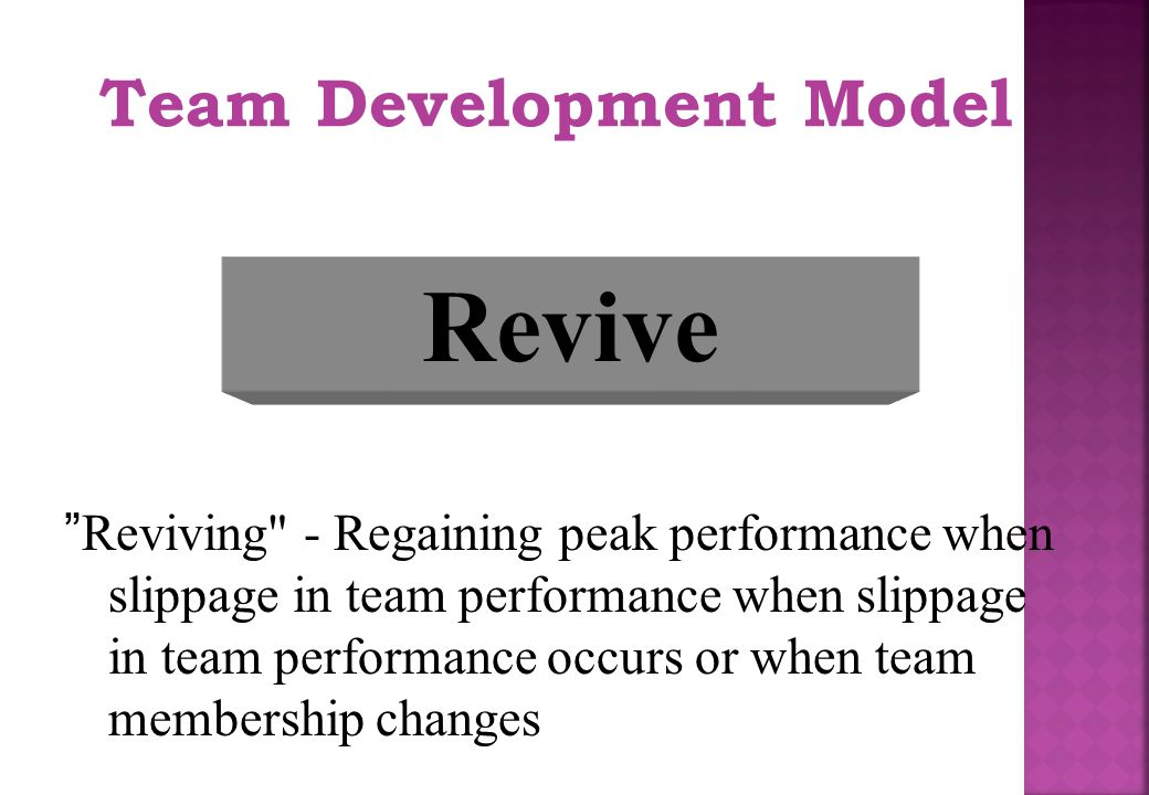 Revive Team Development Model