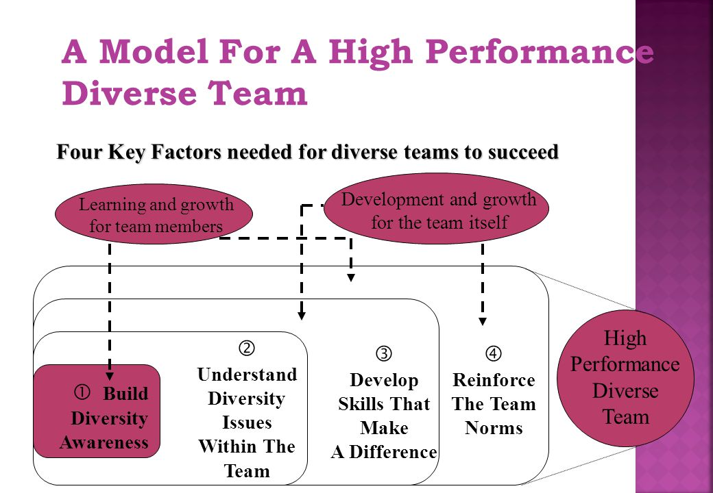 A Model For A High Performance Diverse Team