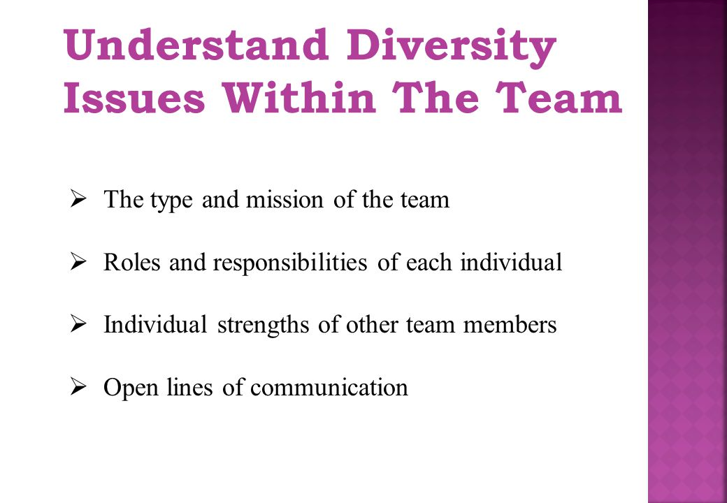 Understand Diversity Issues Within The Team