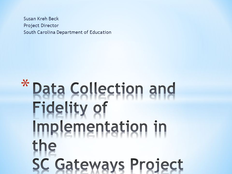 Susan Kreh Beck Project Director. South Carolina Department of Education.