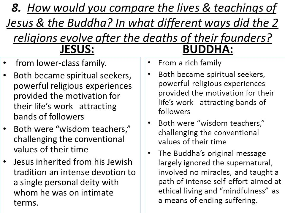8. How would you compare the lives & teachings of Jesus & the Buddha