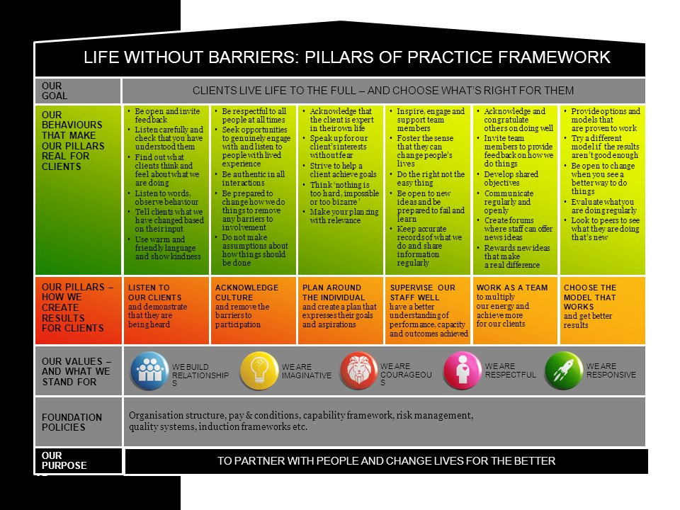 LIFE WITHOUT BARRIERS: PILLARS OF PRACTICE FRAMEWORK