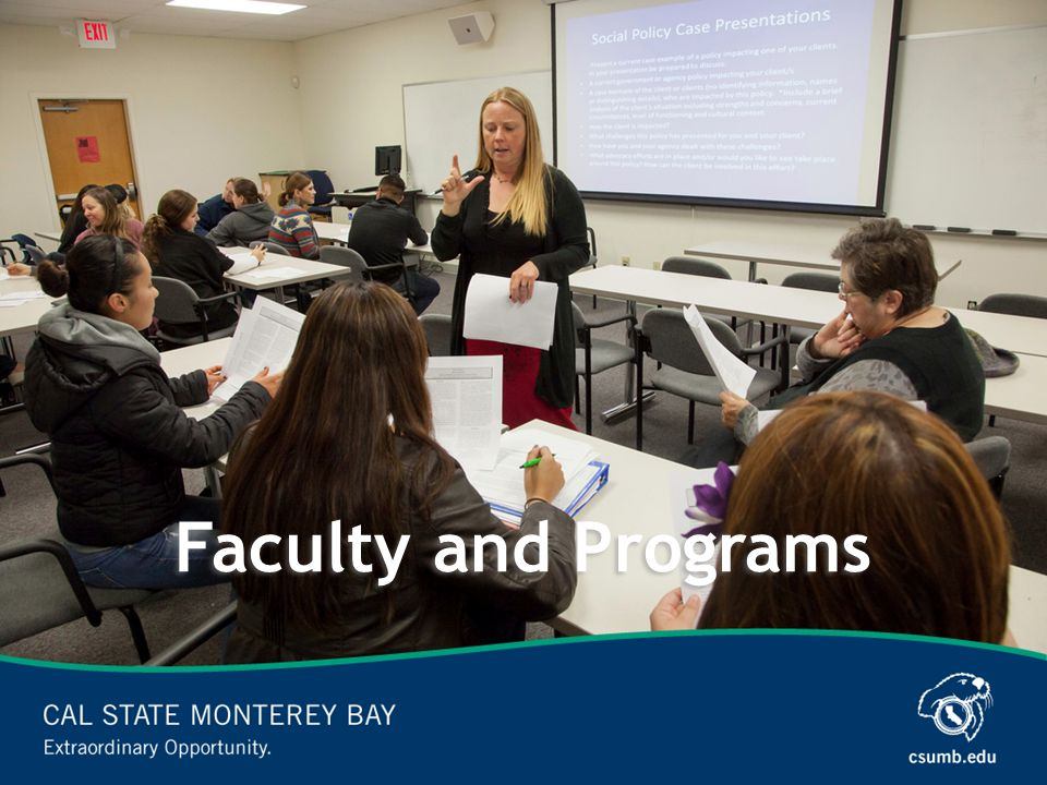 Faculty and Programs