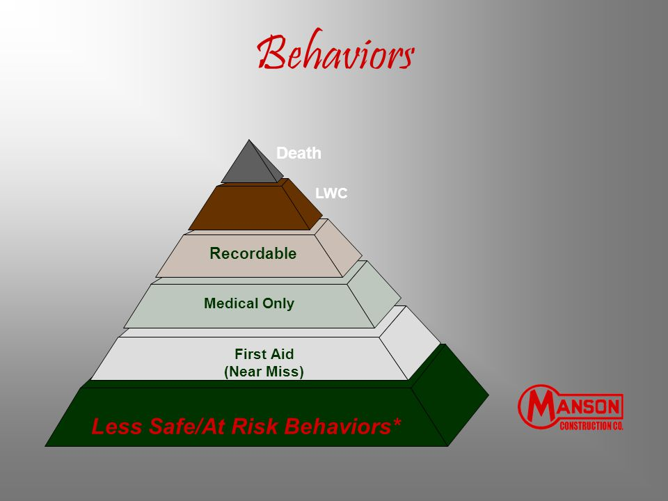 Less Safe/At Risk Behaviors*