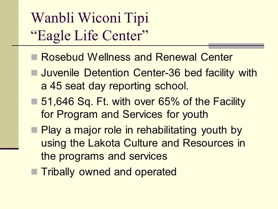 Wanbli Wiconi Tipi Eagle Life Center