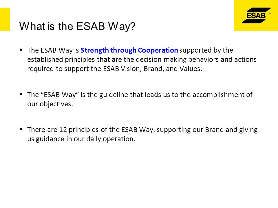 What is the ESAB Way