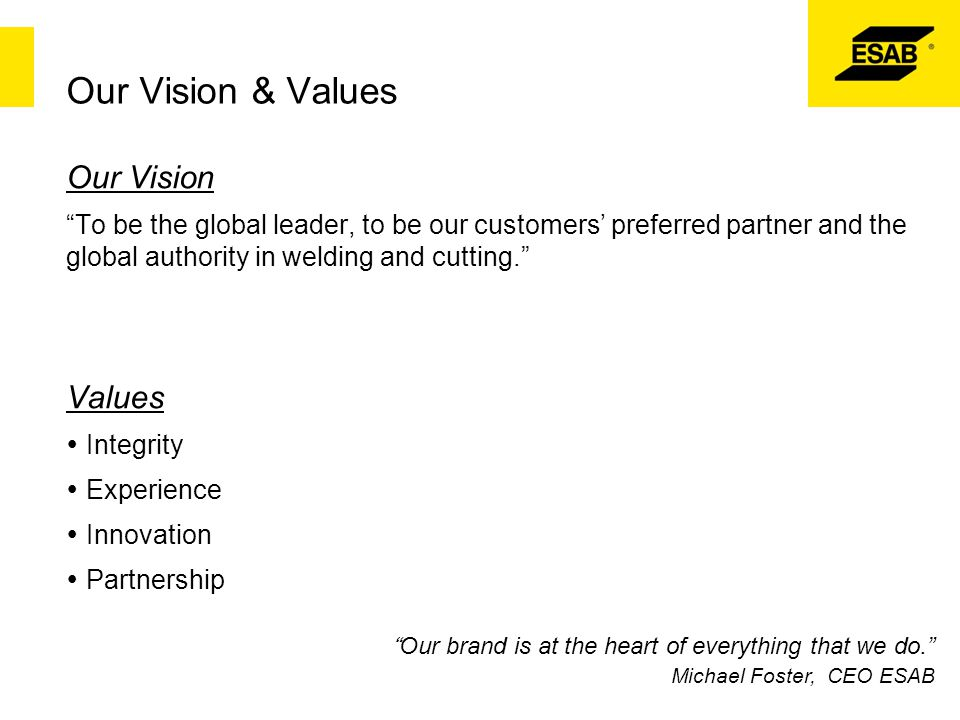 Our Vision & Values Our Vision Values