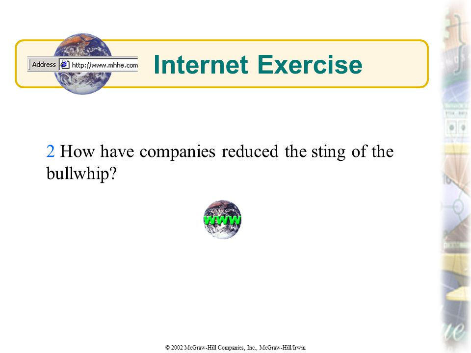 Internet Exercise 2 How have companies reduced the sting of the bullwhip