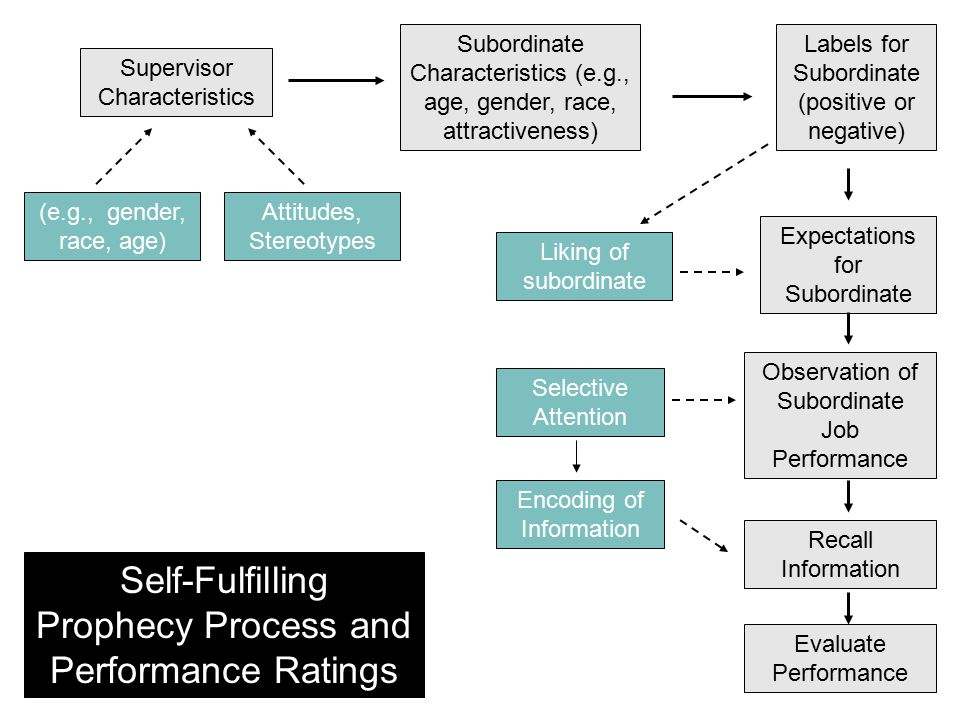 Self-Fulfilling Prophecy Process and Performance Ratings