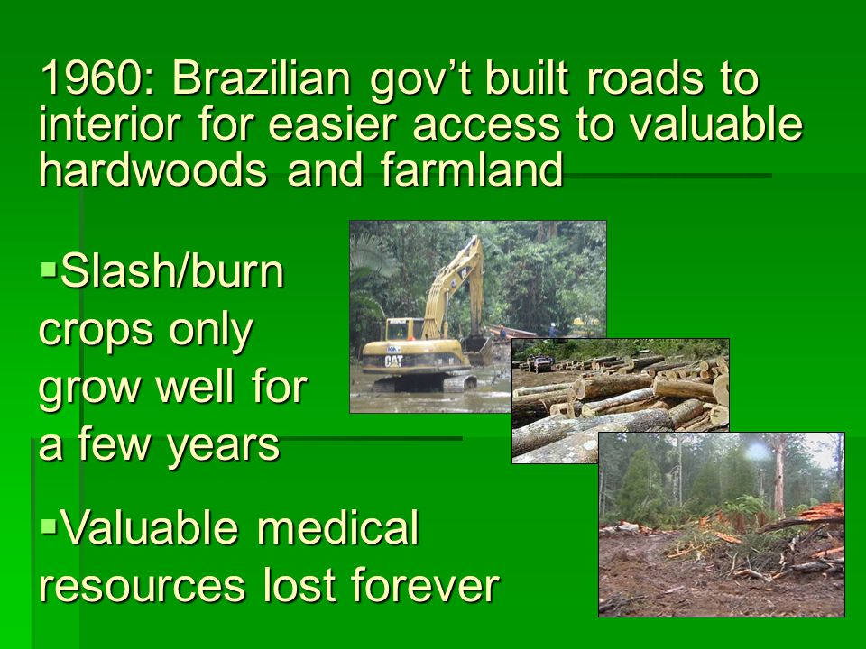 1960: Brazilian gov't built roads to interior for easier access to valuable hardwoods and farmland