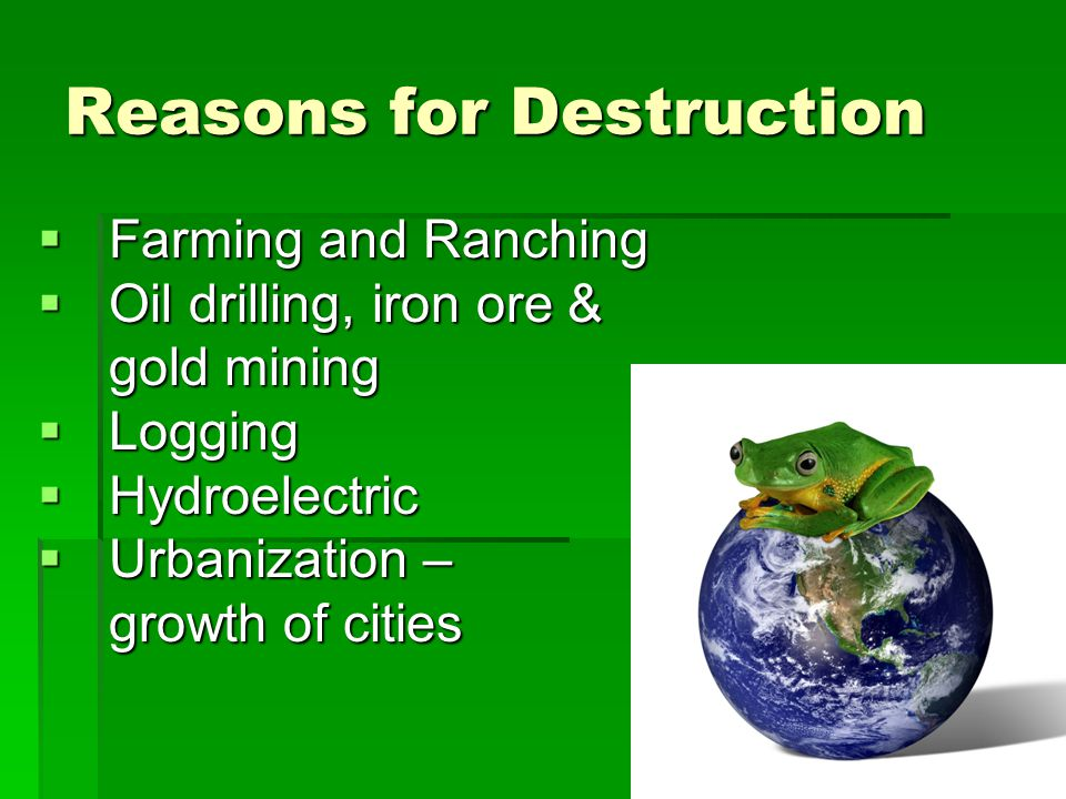 Reasons for Destruction