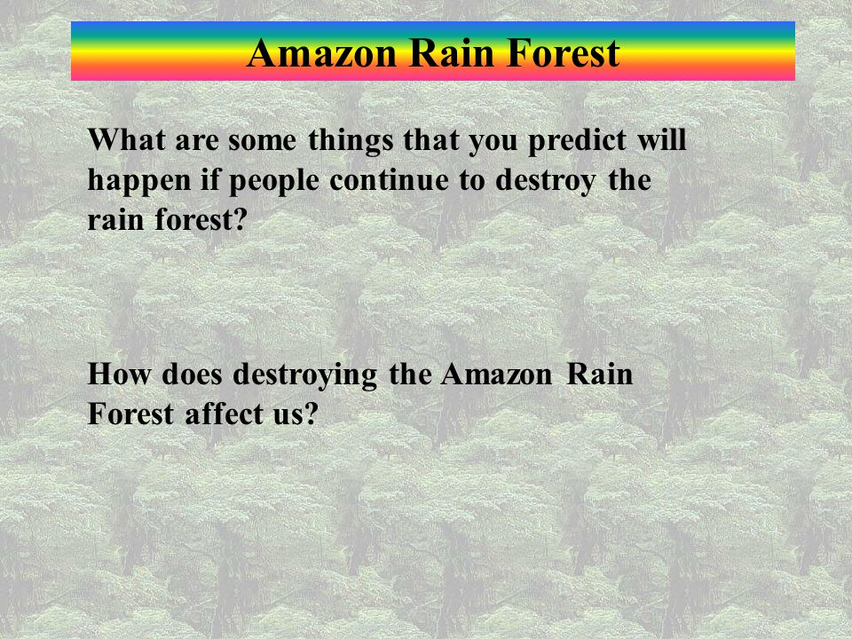 Amazon Rain Forest What are some things that you predict will happen if people continue to destroy the rain forest
