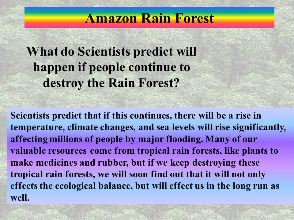 Amazon Rain Forest What do Scientists predict will happen if people continue to destroy the Rain Forest