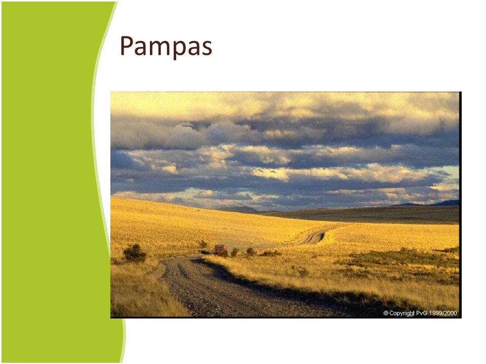 Pampas This could easily be Kansas or Nebraska or eastern Colorado or Indiana or Iowa.