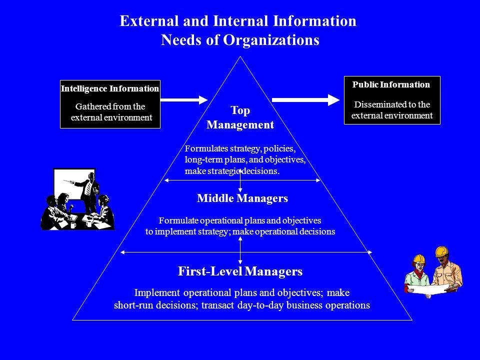 External and Internal Information Needs of Organizations