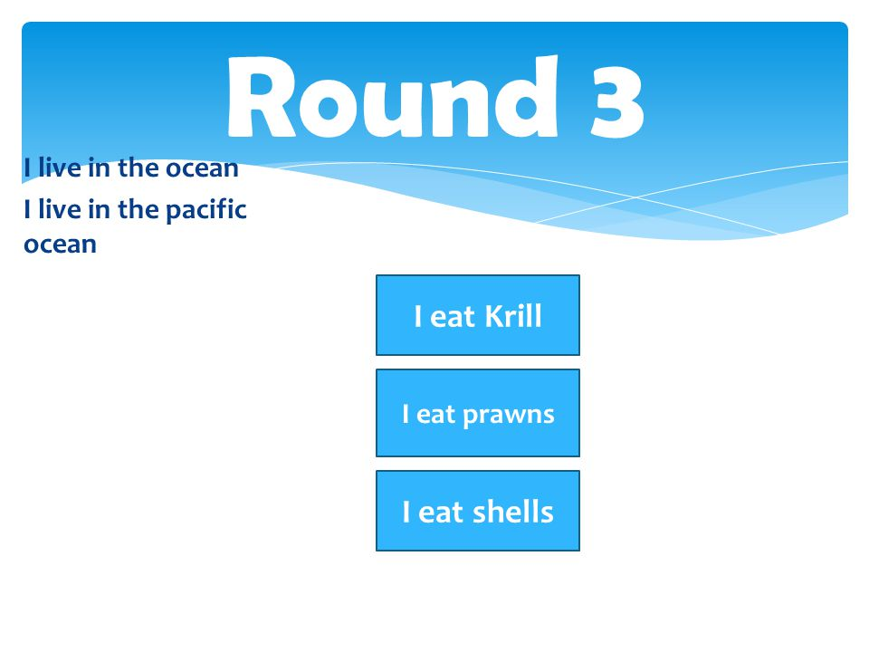 Round 3 I eat Krill I eat shells