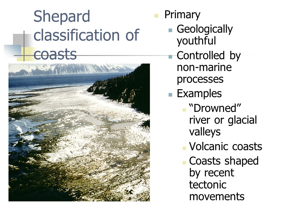 Shepard classification of coasts