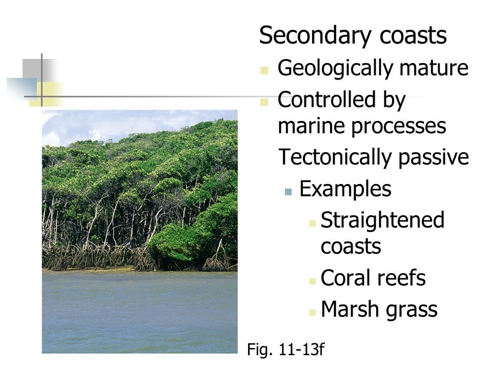 Secondary coasts Geologically mature Controlled by marine processes