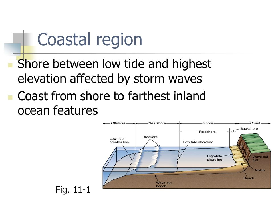 Coastal region Shore between low tide and highest elevation affected by storm waves. Coast from shore to farthest inland ocean features.