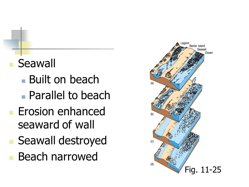 Erosion enhanced seaward of wall Seawall destroyed Beach narrowed