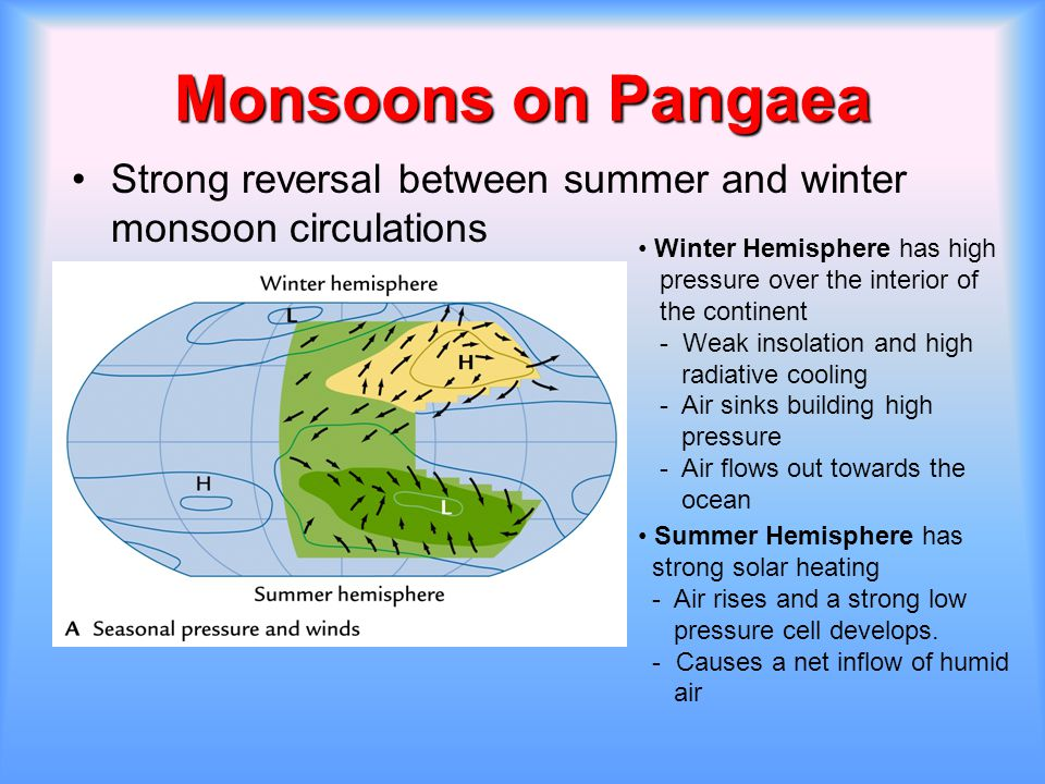 Monsoons on Pangaea Strong reversal between summer and winter monsoon circulations. Winter Hemisphere has high.