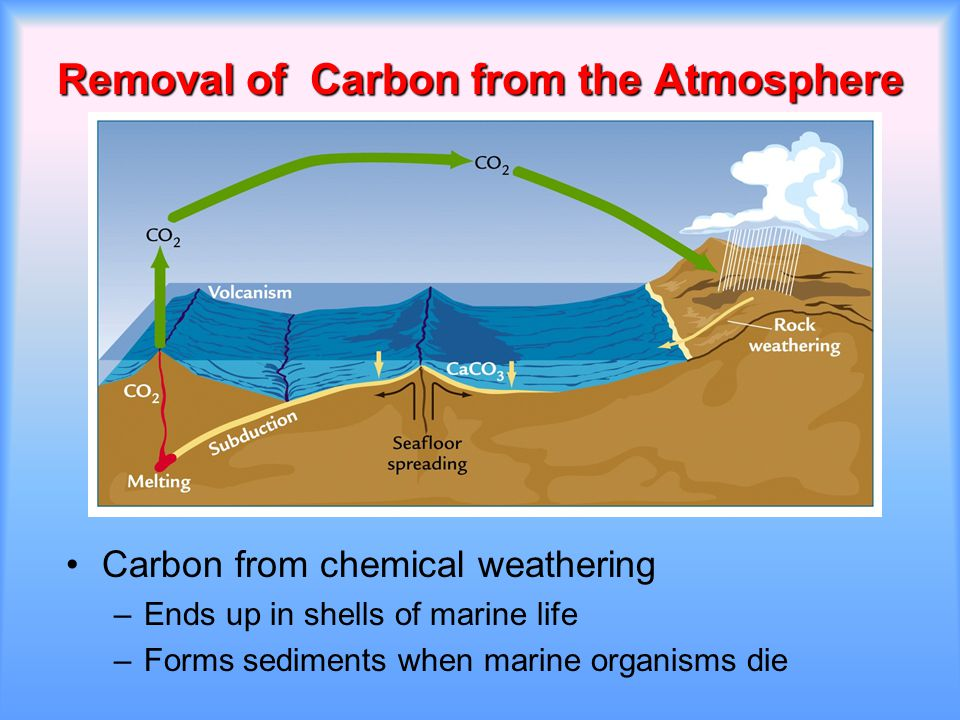 Removal of Carbon from the Atmosphere